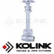 Stainless Steel Cryogenic Globe Valve